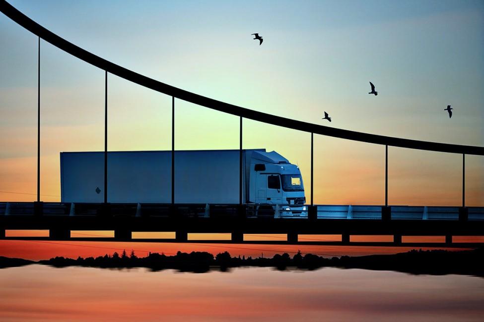 Slewing bearings for global logistics