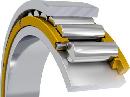 Toroidal roller bearings