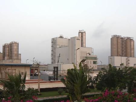 Polymer plants