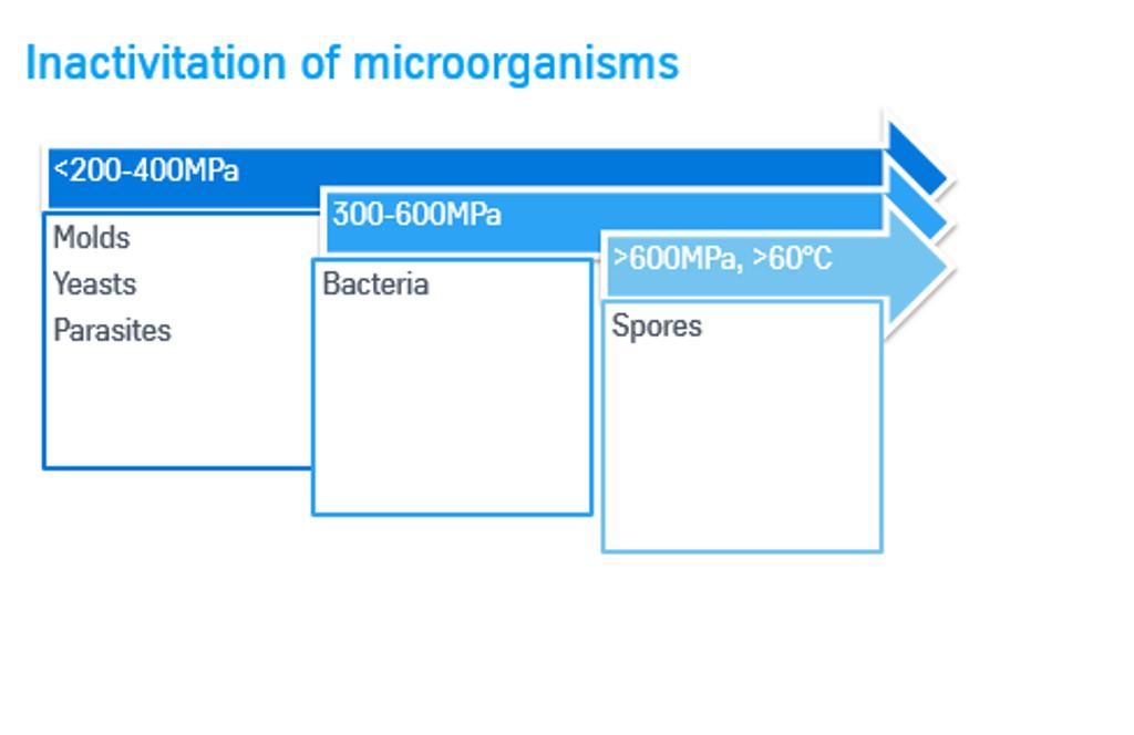 Wie konserviert HPP Lebensmittel? Infografik