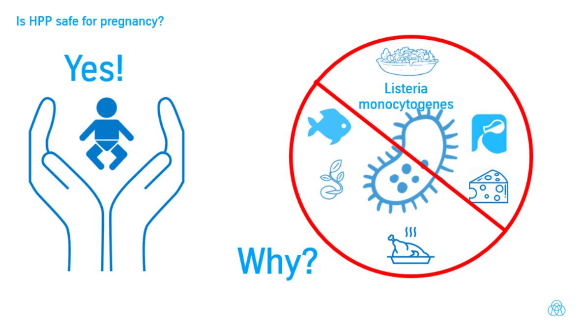 Ist HPP sicher in der Schwangerschaft? Infografik