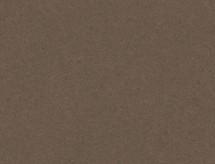 Nobelis N213 Grau