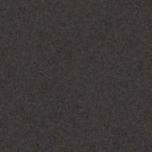 C01.25 Chester Anthracite