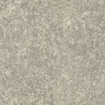 NA13 Silver Quartzite