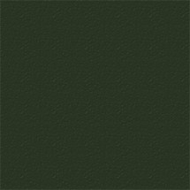 A3481 Forest Green