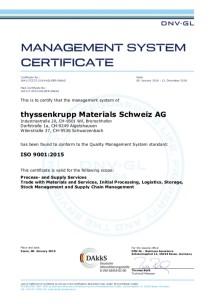 ISO 9001:2015 (Englisch)