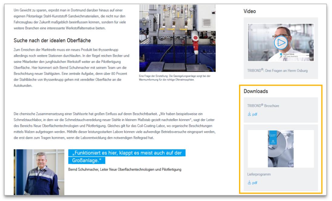 Documents Download - Modulansicht