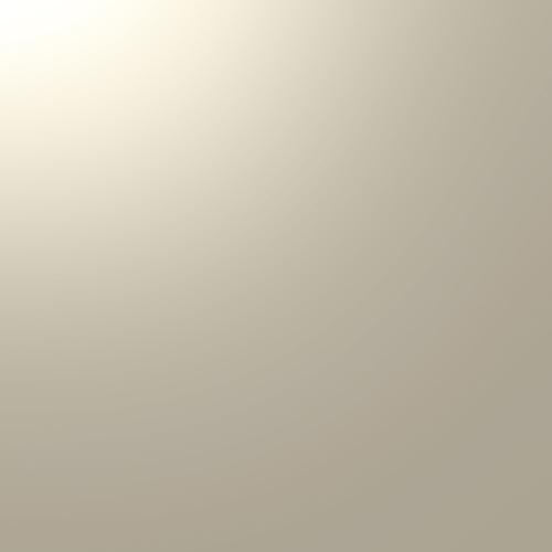 ALUCOBOND PLUS Champage Metallic 503