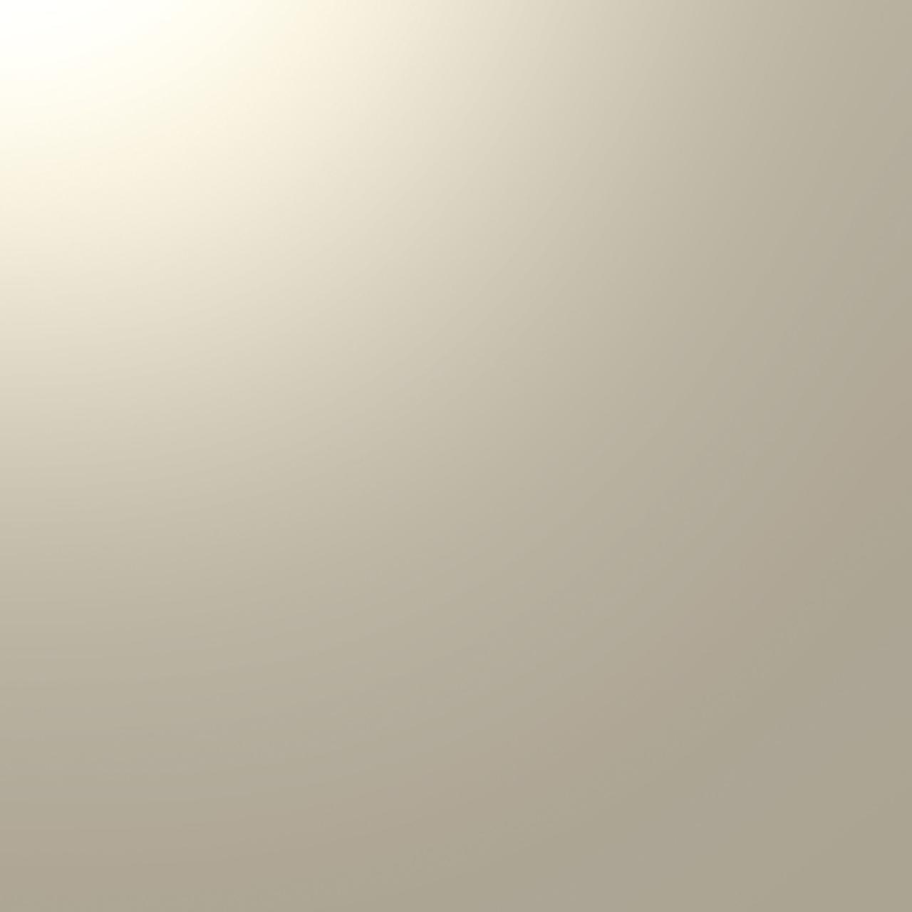 ALUCOBOND® Champagne Metallic 503