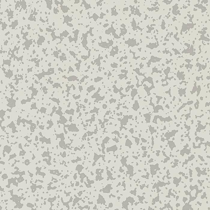 D02.1.0 Pastel Grey Silver