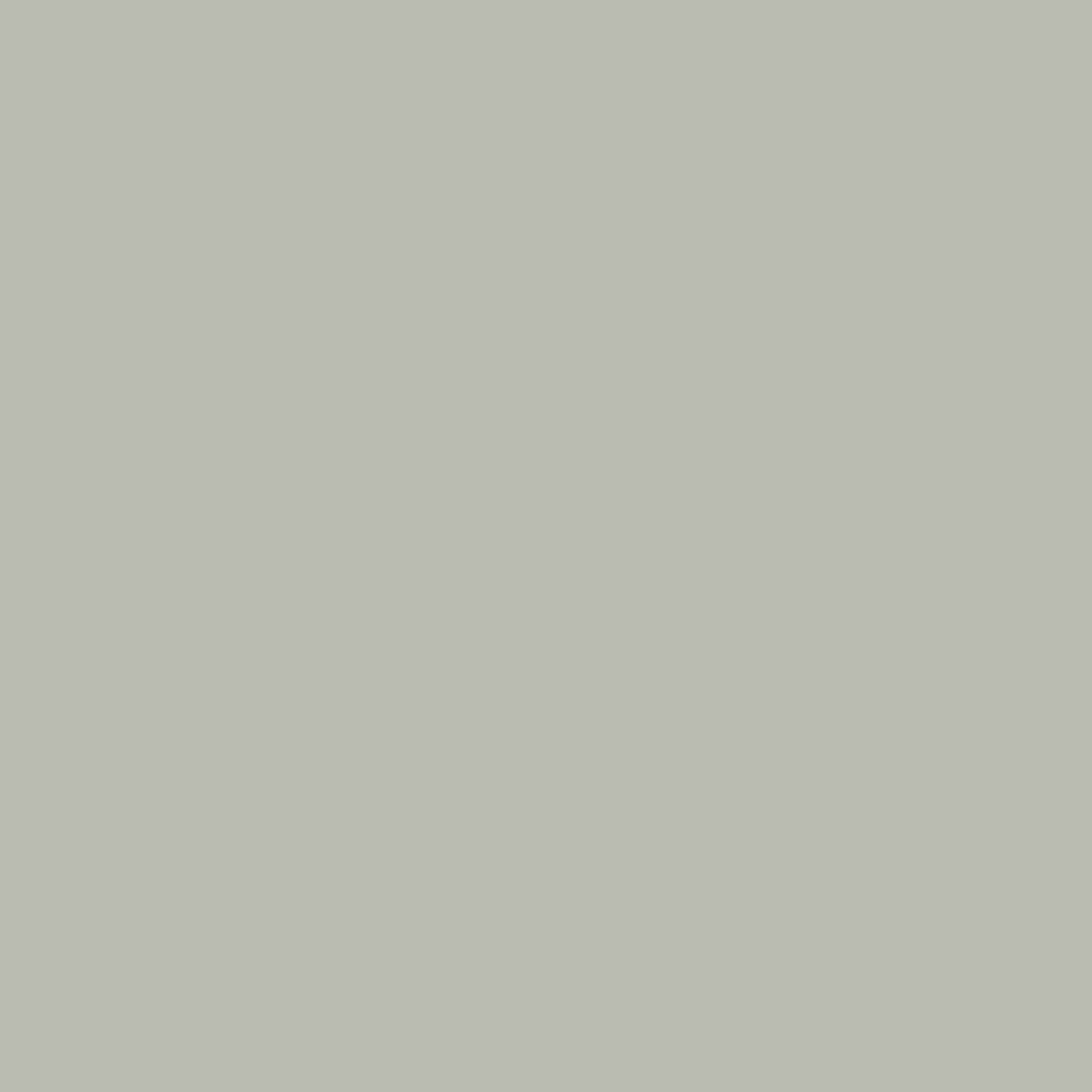 E0-02 Silver Grey