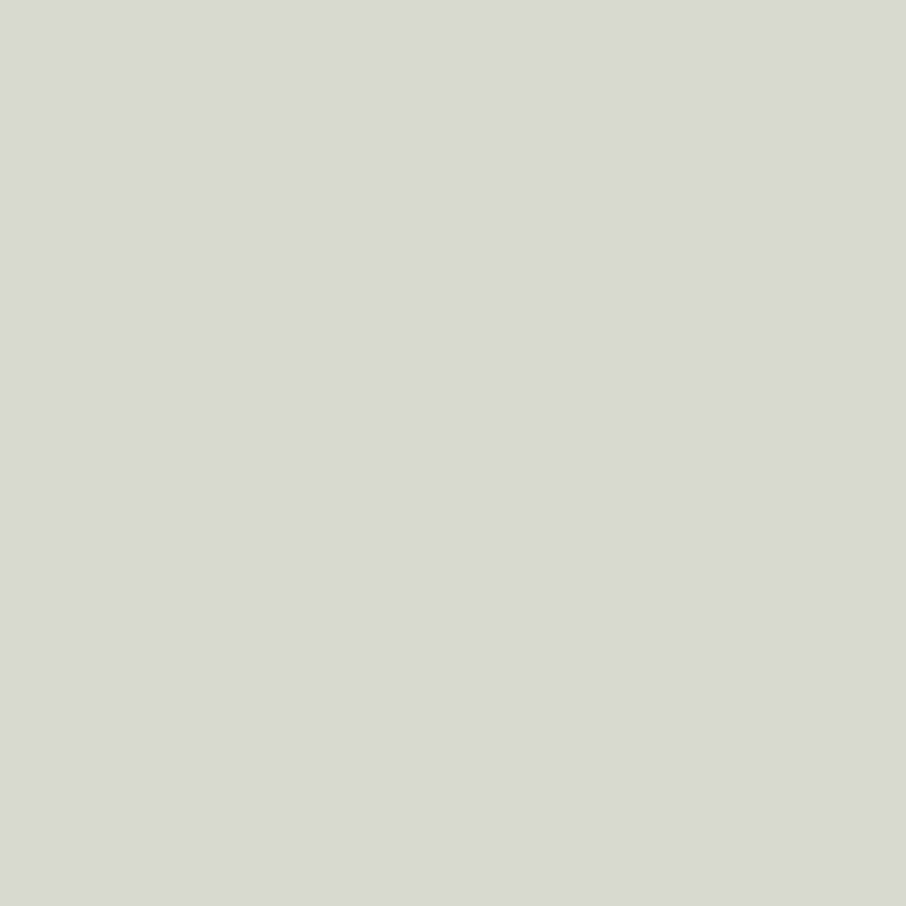 T03.1.0 Pastel Grey