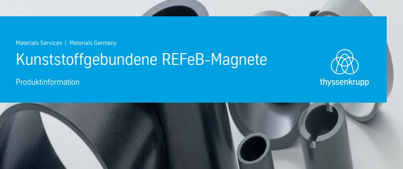 Kunststoffgebundene Neodym-Eisen-Bor-Magnete